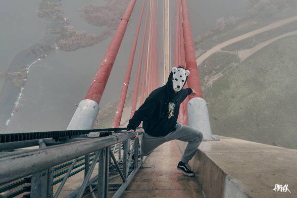 puente talavera de la reina