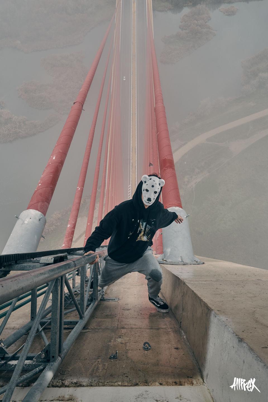 talavera de la reina puente